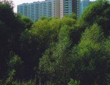 Ул. Коштоянца, 47, корп. 1, 2
